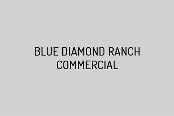 Blue Diamond Ranch Commercial